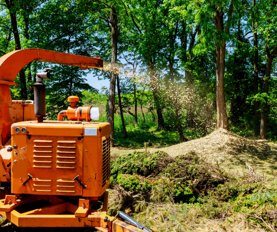 Wood Chipping & Brush Removal In Atlanta